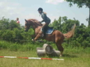 Ich verkaufe mein Pony