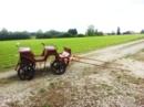 Pony-Kutsche, Wagonette, mit Blumenmustern verziert