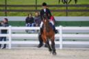 Top Springpferd fur Junior mit TÜF