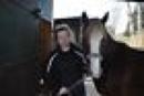Schöner dunkelfuchs Pony-Wallach, lieb, verschmust, 3 Jahre