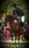 deutsches reitpony, Pony, springen, dressur